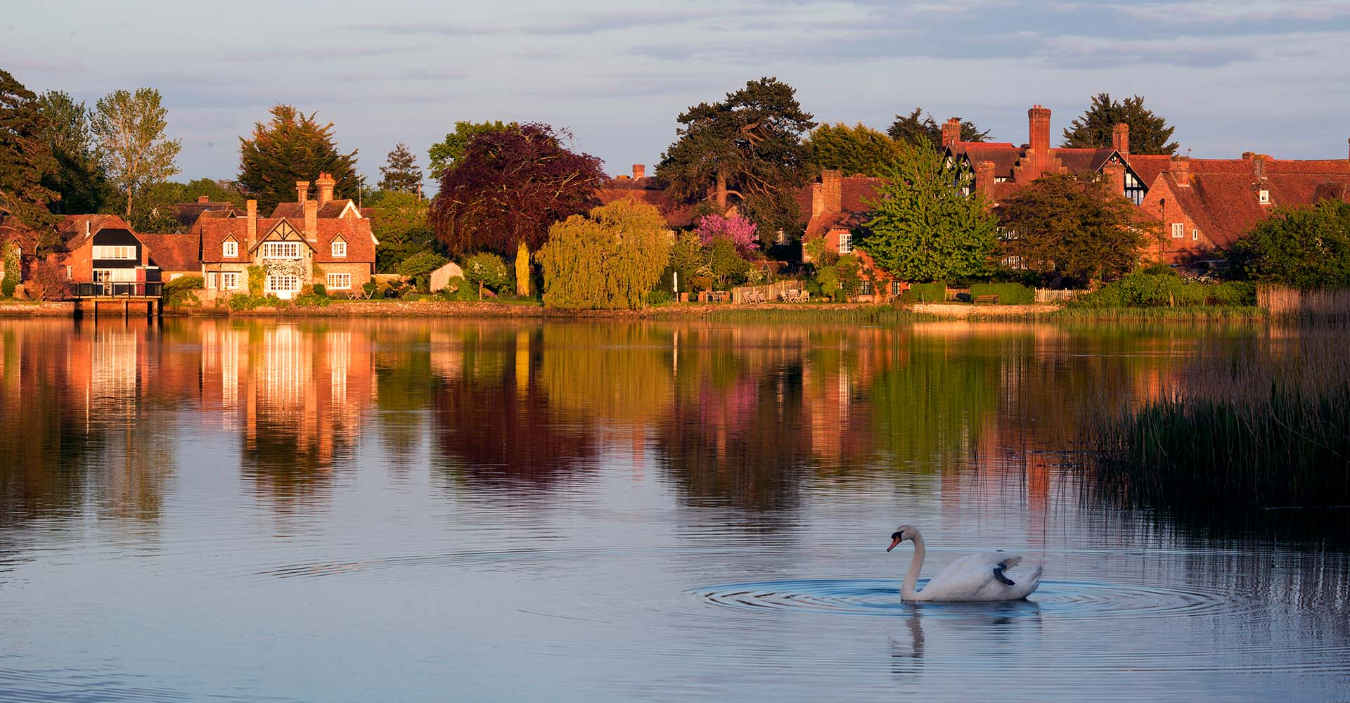 Autumn Breaks In The New Forest | The Montagu Arms